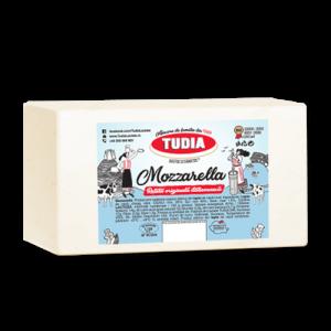 mozzarella_tudia